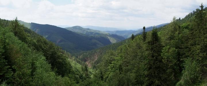 Sedlo Čertovica (1232 mnm)