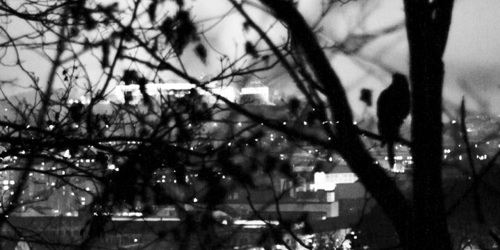 22:00 - nocující raroh velký si užívá výhled na Špilas